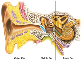 hearing aid fitting center kolkata west bengal india